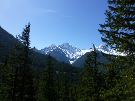 View from Diablo Lake Trail