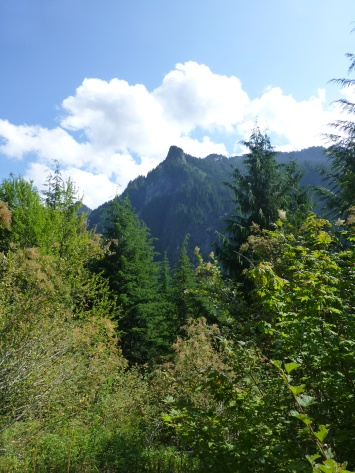 Upper Elliot Trail View