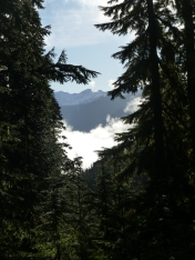 Mount McCausland Trail