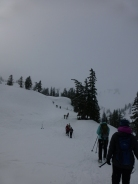 Artist Point Trail