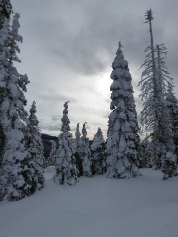 Wenatchee Crest