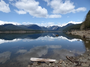 Baker Lake - Maple Grove
