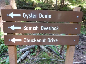 Oyster Dome